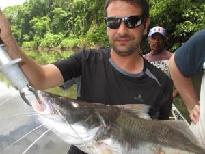 Brachyplatystoma pêche Guyane Aventure