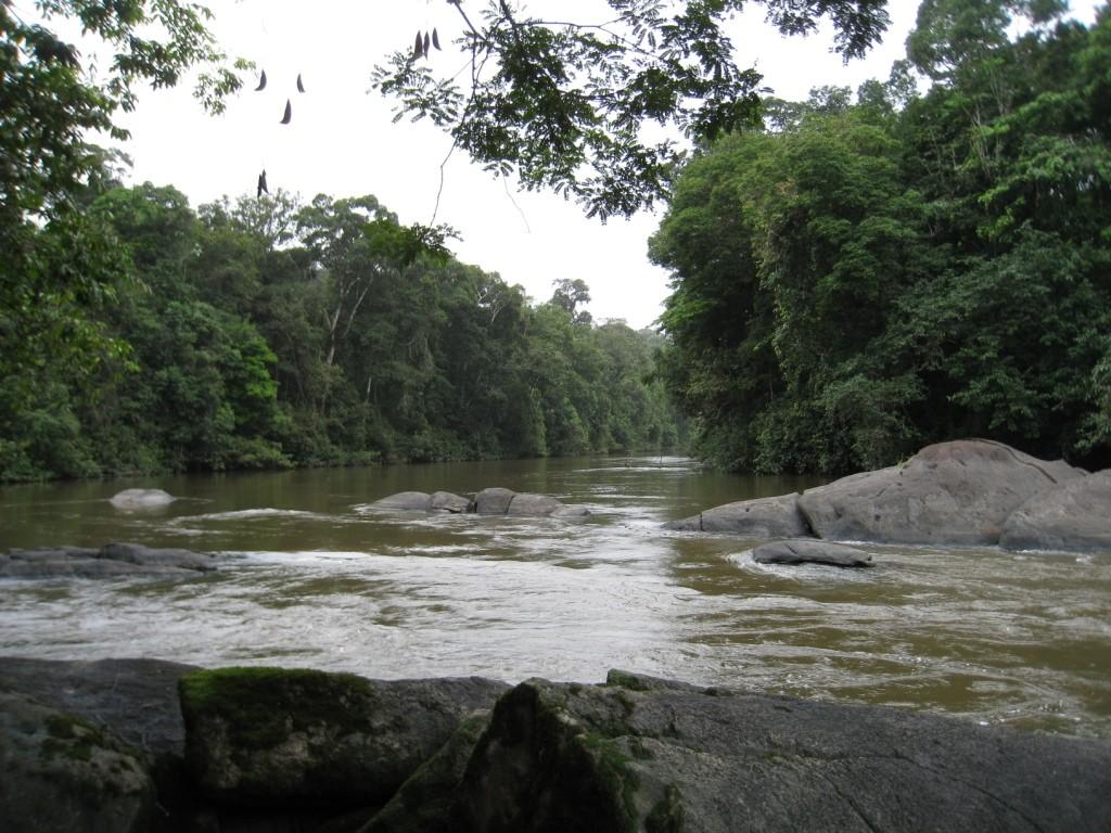 Vue Approuague Guyane Aventure pêche Inselberg