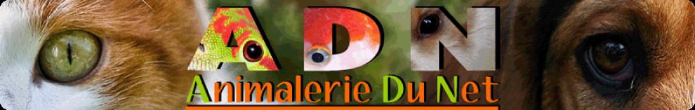 Bannière Animalerie du net partenaires Guyane Aventure