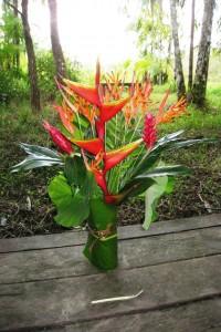 bouquet héliconia Guyane aventure
